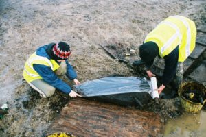 Mesolithic Fish Trap