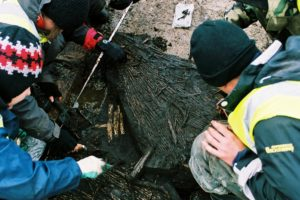 Mesolithic Fish Trap